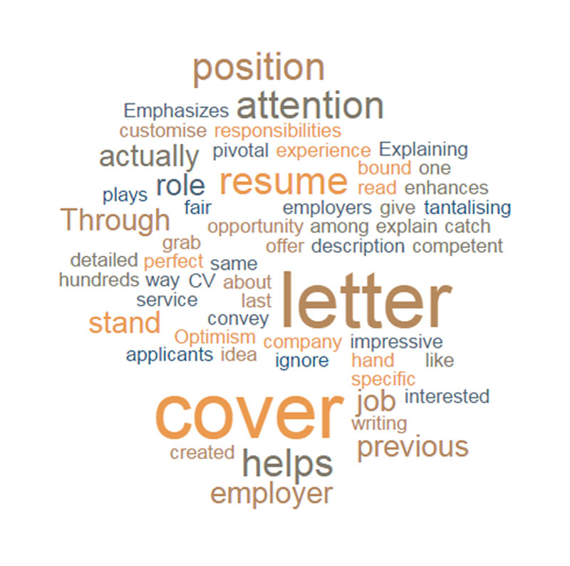 Top rated essay writing services executive resume